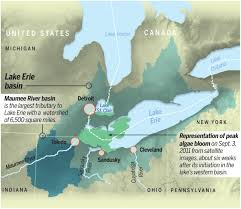 a watershed moment great lakes at a crossroads toxic algae