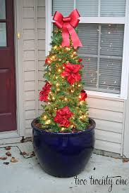 Plant Used As A Christmas Decoration Best 25 Tomato Cages Ideas On Pinterest Tomato Cage Tomatoe