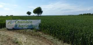 chambre d agriculture chambres d agriculture la régionalisation freinée par le conseil