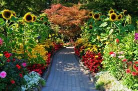 discover the most beautiful public gardens in the world serenity