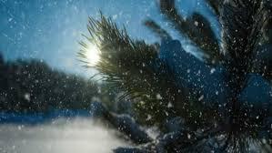the nutcracker op 71 no 9 waltz of the snowflakes mtv