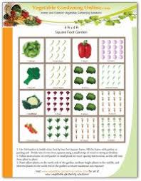 designing your vegetable garden layout