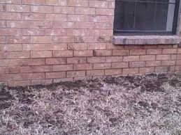 How To Regrade A Backyard Regrade Yard Youtube