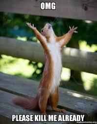 Please Kill Me Meme - omg please kill me already happy squirrel make a meme