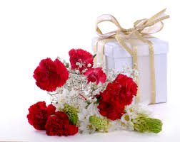 wedding flowers gift carnations the overlooked beautiful wedding flowers