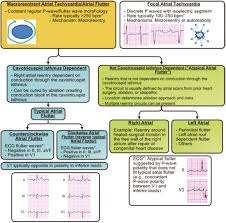 2014 aha acc hrs guideline for the management of patients with