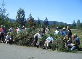 Wildfire Ladysmith Bc by Broombusters Cut Broom In Bloom Mid Vancouver Island