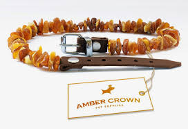 popular product reviews by amy amber flea and tick collar for