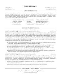 examples of great sales resumes resume for your job application