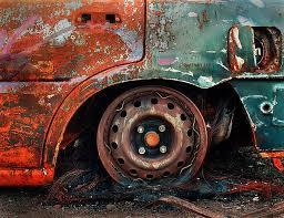1003 best just rust u0026 peeling paint u0026 maybe some bark u0026 fungus 1