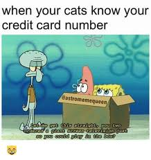 Credit Card Memes - 25 best memes about credit card numbers credit card