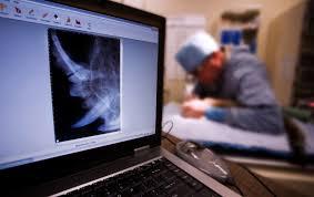 veterinary radiology papillion animal hospital