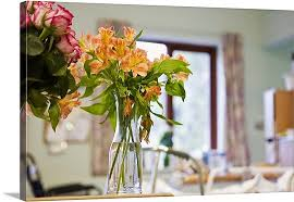 Flowers In Vases Images Flowers In Vases In Hospital Room Wall Art Canvas Prints Framed