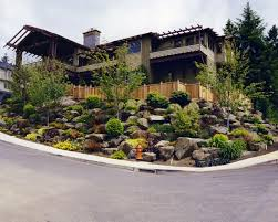 Steep Sloped Backyard Ideas by Download Hillside Landscape Design Ideas Solidaria Garden