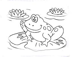 print u0026 download frog coloring page