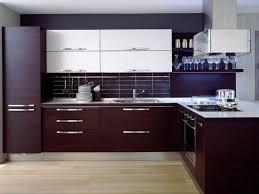 Modern Kitchen Cabinets by Kitchen Modern Kitchen Cabinets And 36 Top Modern Kitchen