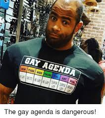 Funny Gay Meme - gay tues agenda wed sat sun the gay agenda is dangerous funny