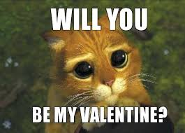 Will You Be My Valentine Meme - will you be my valentine cat valentine s day info