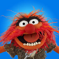 animal muppets pictures muppets animal photos