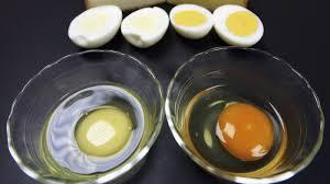 Weirdest Color Names by Help My Egg Yolks Are Freakishly White The Salt Npr