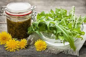 cuisiner le pissenlit anti gaspi 5 tiges et feuilles à cuisiner sans modération bio