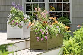 wonderful planter pots melbourne photo ideas surripui net