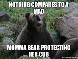 Mad Meme - nothing compares to a mad momma bear protecting her cub
