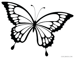 coloring pictures of small butterflies coloring pictures of butterflies dudik me