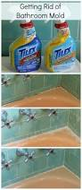 Cleaning Tips For Home by 50 Best Cleaning Tips For Home Images On Pinterest Cleaning