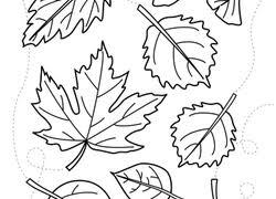 preschool fall worksheets u0026 free printables education com