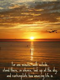 quotes about fall in florida travel in paradise with keys claudia march 2014