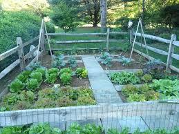 Ideas For Garden Walkways Garden Walkway Ideas Garden Path Staggered Garden Path Staggered