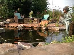 Backyard Ponds Ideas Backyard 25 Beautiful Small Backyard Ponds Ideas On Pinterest
