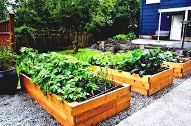 design garden small urban vegetable garden profile raised beds
