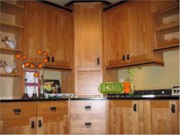 Birch Kitchen Cabinets Best Types Of Wood For Furniture And Modern Interior Design