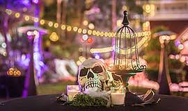 lots of halloween costume parties and fall activities throughout halloween events kpbs