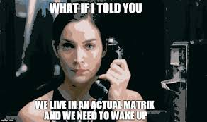 Trinity Meme - trinity f the matrix explains how we live in an actual matrix