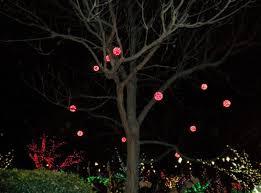 100 ideas light balls for outside trees on www