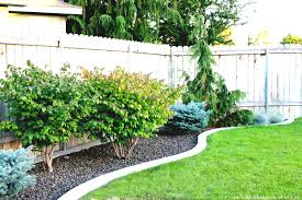 Backyard Low Maintenance Landscaping Ideas Low Maintenance Free Budget Landscaping Ideas Pictures Easy For