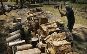 california has 66 million dead trees but nowhere to put the wood