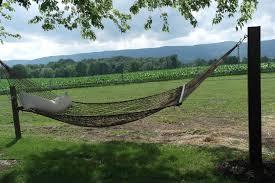 backyard hammock no trees u2013 hammock