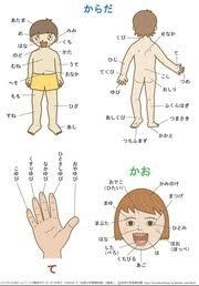 body japanese teaching ideas