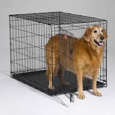 Dog Crate Covers Midwest Icrate Folding Double Door Dog Crate Hayneedle