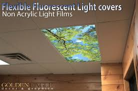 forest canopy view 2ft x 4ft drop ceiling fluorescent decorative