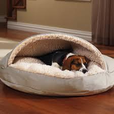 bedroom wonderful orvis bedside platform dog bed king bed with