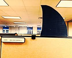great idea for your cubicle use velcro on picture frames to