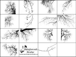 14 photoshop 7 tree border brush photoshop brushes in photoshop