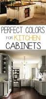 Painted Kitchen Cabinet Ideas How To Spray Paint Cabinets Like The Pros Spray Paint Cabinets