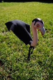 zombie flamingo spirit halloween 23 best flamingo lawn decor images on pinterest pink flamingos