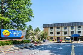 Comfort Inn Ballston Virginia Comfort Inn Hotels In Sterling Va By Choice Hotels